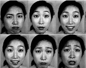 日本女性面部表情(JAFFE)数据库