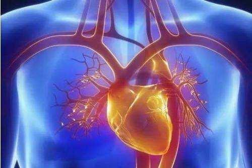 Cardiac MRI 心脏病影像数据