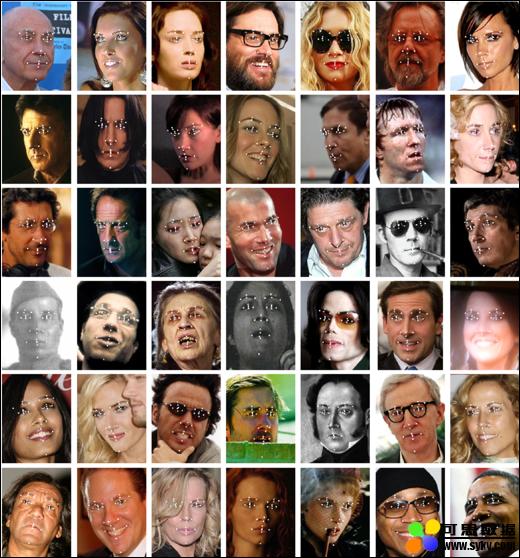 室外人脸标注面部数据集(LFPW)