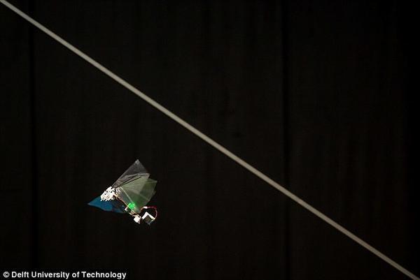 新型仿生机器人灵活度堪比昆虫
