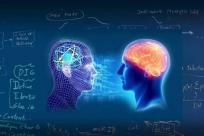 DeepMind  综述深度强化学习:智能体和人类相似度